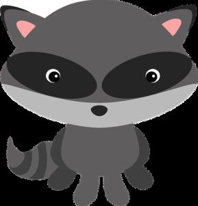 raccoon-1510501_640